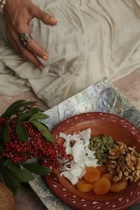 Prato com sementes e frutas.
